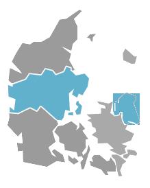 regionerne